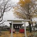 Photos: 小山田神社(町田市)