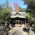 Photos: 三囲稲荷神社(向島2丁目)拝殿
