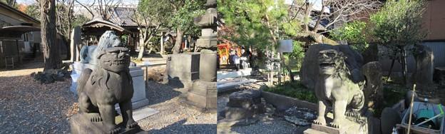三囲稲荷神社(向島2丁目)狛犬