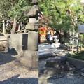 Photos: 三囲稲荷神社(向島2丁目)狛犬