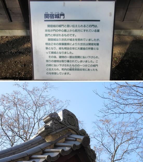 逆井城 関宿城門(茨城県坂東市営 逆井城跡公園)