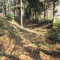 Photos: 逆井城 横矢(茨城県坂東市営 逆井城跡公園)