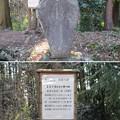 Photos: 箕輪城(高崎市)芭蕉句碑