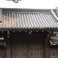 16.03.28.皇居乾通り(局門