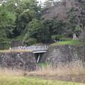 Photos: 16.03.28.皇居乾通り(西桔梗橋。渡ると天守台