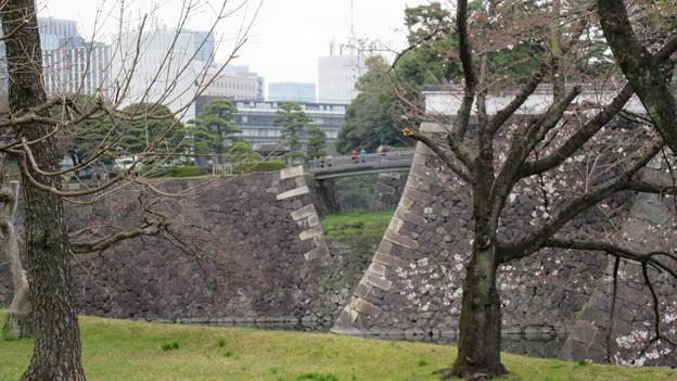 16.03.28.皇居乾通り(北桔梗橋・門