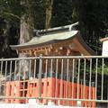 貴布禰総本宮 貴船神社(左京区)梅宮社