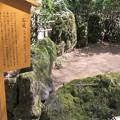 貴布禰総本宮 貴船神社(左京区)石庭