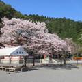 Photos: 16.04.11.鞍馬寺(左京区)本殿金堂