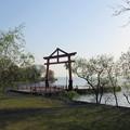 日吉大社琵琶湖鳥居(大津市)
