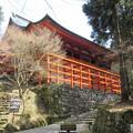 Photos: 比叡山 延暦寺(大津市)横川中堂