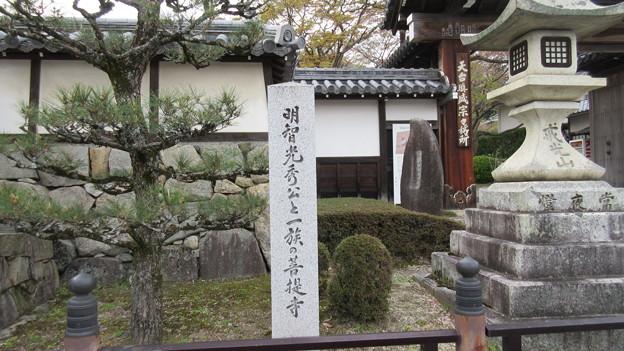 西教寺(大津市)