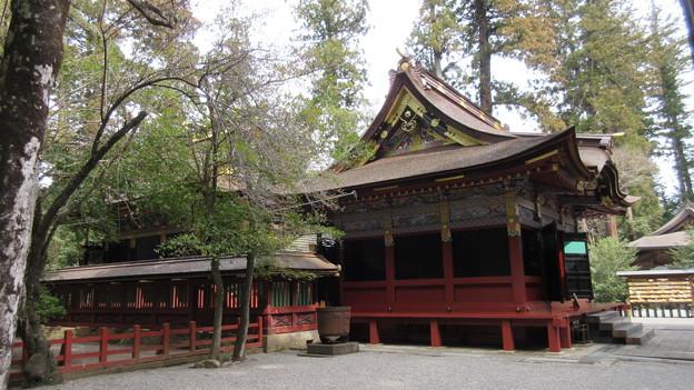 一之宮貫前神社(富岡市)拝殿・本殿
