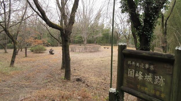 Photos: 国峰城(甘楽町)御殿平