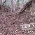 Photos: 国峰城(甘楽町)