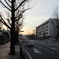Photos: 高崎城(和田城。高崎市)槻木門