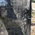 白井城(渋川市)北郭櫓台