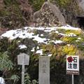 榛名神社(高崎市)御庁宣の碑