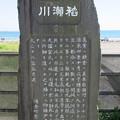 Photos: 稲瀬川(鎌倉市)
