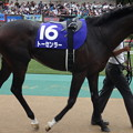 トーセンラー(3回東京2日 11R 第64回 農林水産省賞典 安田記念(GI)出走馬)