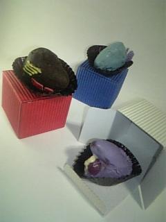 写真: リンクスたちに贈ったチョコ