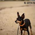 Photos: _MEL7942