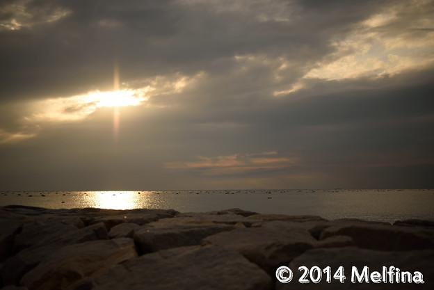 Photos: _MEL7976