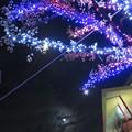 Photos: ~fairy taleな夜~