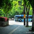 Photos: 森の中を走る青いバス。