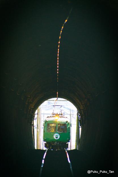 トンネルに吸い込まれる青ガエル。