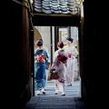 Photos: 路地の華