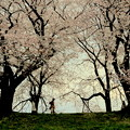 春は曙-3