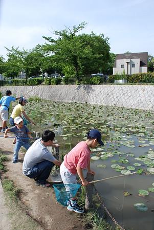 新海池公園(ザリガニ取る家族2)