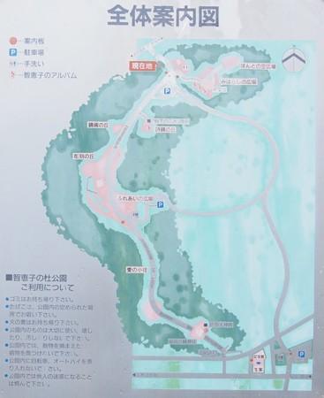 tiekonomori_map