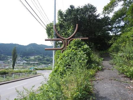 sanrikudaiousugi08