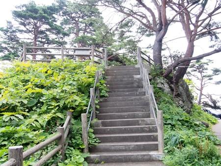 kumanohanatenboudai_iwaizumi6