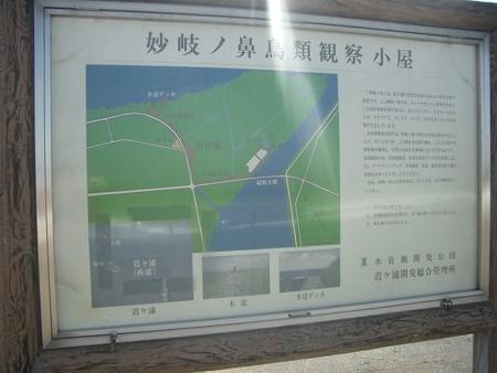 ukisima_myoukinohana1
