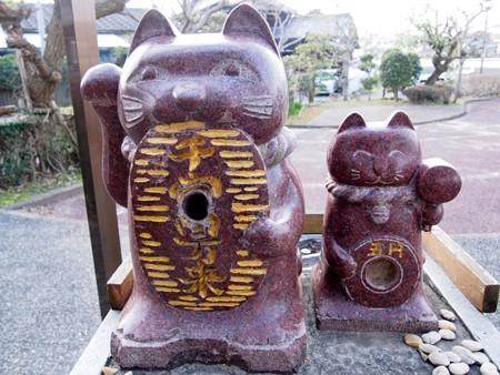 mane-kinekokouen_takasabasi20