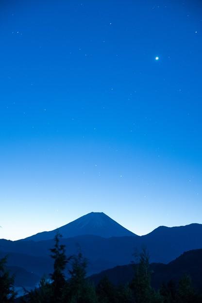 冬の夜明け (1366x2048)