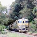 写真: 或る列車 5