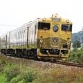 写真: 大村線・或る列車