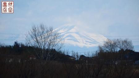 渡良瀬遊水地02