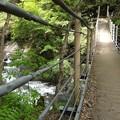大柳川渓谷遊歩道