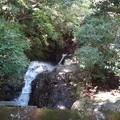 Photos: ひわいな滝