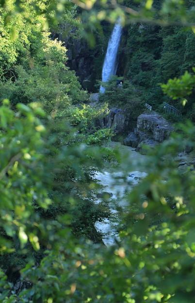 手取峡谷 綿ヶ滝