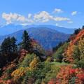 白山白川郷ホワイトロードから 白山と紅葉の山並み