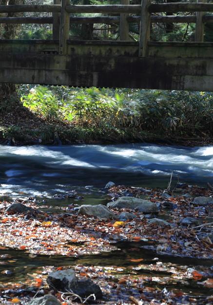 湯滝の渓流