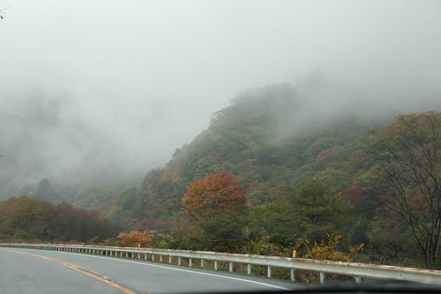 いろは坂 紅葉と霧(2)