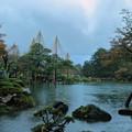 兼六園  霞が池と徽軫灯籠