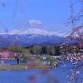 白山と枝垂れ桜